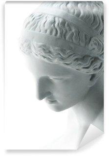 Vinylová Fototapeta Bílá socha Venuše