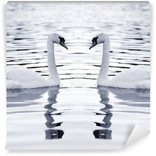 Vinylová Fototapeta Bílé labutě