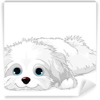 Vinylová Fototapeta Bílé štěně