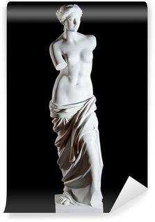 """Vinylová Fototapeta Bílý mramor klasické socha """"Aphrodite of Milos"""" izolovaný"""