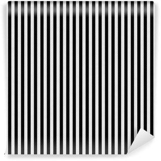 Vinylová Fototapeta Black and White Stripes texturou Fabric Background