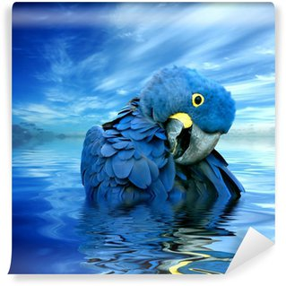 Vinylová Fototapeta Blauer Papagei