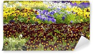 Fototapeta Winylowa Blumen Więcej