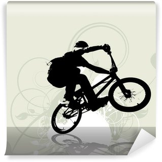 Vinylová Fototapeta BMX cyklista. Vektor