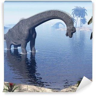 Vinylová Fototapeta Brachiosaurus dinosaur ve vodě - 3d vykreslování