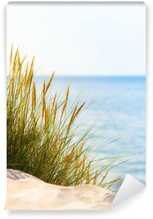 Vinylová Fototapeta Bright Beach Scene