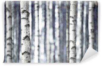 Vinylová Fototapeta Břízy v modrém