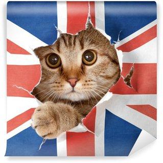 Fototapeta Vinylowa Brytyjski kot patrząc przez otwór w papieru flaga Wielkiej Brytanii