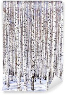 Fototapeta Winylowa Brzozowy las Winter - serenity zima. Idealnie pasuje do Calenda