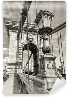 Vinylová Fototapeta Budapešť pohled Řetězový most den černobílý