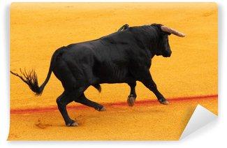 Vinylová Fototapeta Bullfight, Seville