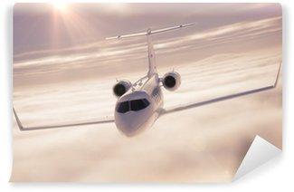 Vinylová Fototapeta Business jet