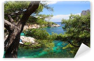 Vinylová Fototapeta Calanques z Port Pin v Cassis ve Francii