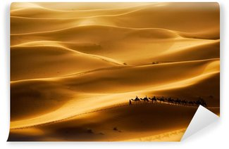 Vinylová Fototapeta Camel Caravan