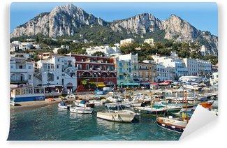 Vinylová Fototapeta Capri, Marina Grande