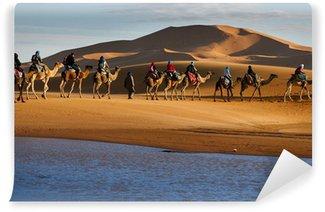 Vinylová Fototapeta Caravan turistů procházejících pouštní jezero na velbloudech