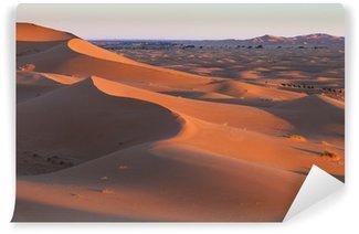 Vinylová Fototapeta Caravan v saharské poušti Maroka