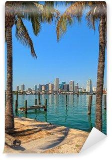 Vinylová Fototapeta Centra Miami Skyline