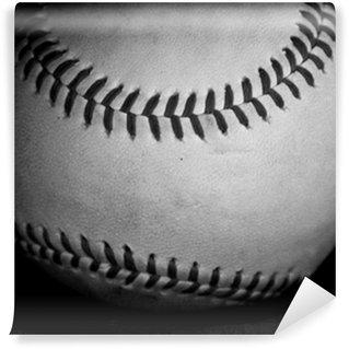 Vinylová Fototapeta Černá a bílá baseball