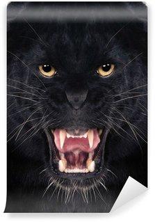 Vinylová Fototapeta Černý leopard