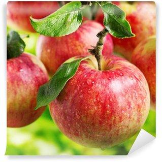 Vinylová Fototapeta Červená jablka