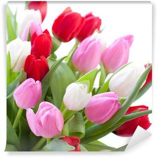 Vinylová Fototapeta Červené, růžové a bílé tulipány