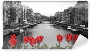 Vinylová Fototapeta Červené tulipány v Amsterdamu