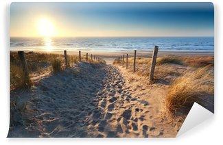 Vinylová Fototapeta Cesta k písčité pláže v Severním moři