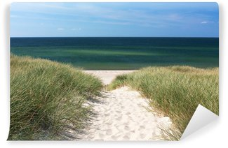 Vinylová Fototapeta Cesta na pláž přes duny v Kampen na ostrově Sylt
