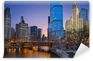 Vinylová Fototapeta Chicago řeky.