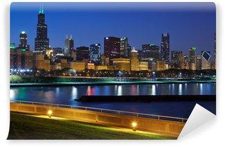 Vinylová Fototapeta Chicago skyline