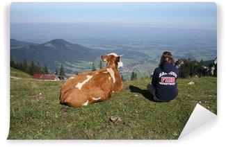 Fototapeta Winylowa Chiemgau Alps / Kampenwandbahn