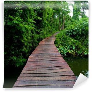 Fototapeta Vinylowa Chodnik Rope w lesie