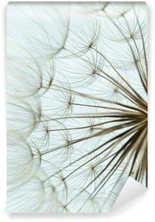 Fototapeta Winylowa Close-up z nasion mniszka lekarskiego