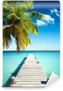 Vinylová Fototapeta Coconut Beach Dovolená
