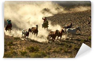 Vinylová Fototapeta Cowgirl a Cowboy cvalu a slaňování divokých koní