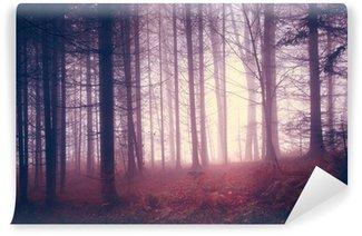 Vinylová Fototapeta Creepy vintage barvy les