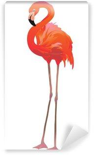 Fototapeta Winylowa Фламинго / Czerwonak