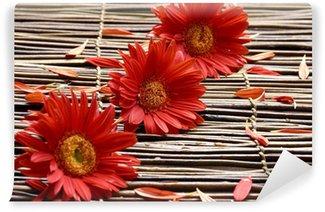 Fototapeta Winylowa Czerwony kwiat z płatkami w spa