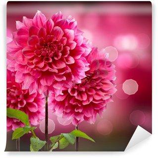 Vinylová Fototapeta Dahlia Podzimní květiny