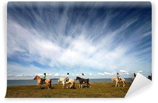 Vinylová Fototapeta Dánské koně na pláži