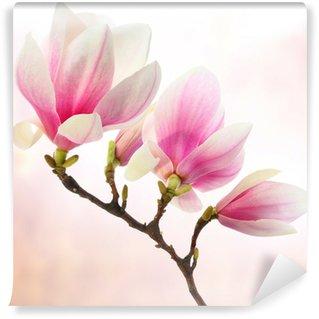 Fototapeta Winylowa Dekoracji magnolia