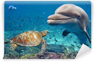 Vinylová Fototapeta Delfín a želva pod vodou na útesu