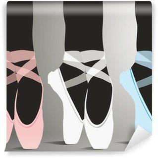 Vinylová Fototapeta Detail baletu dancer's nohy. Vektorové ilustrace