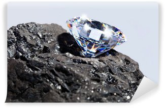 Vinylová Fototapeta Diamond a uhlí