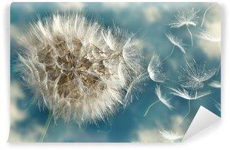 Fototapeta Winylowa Dmuchawiec utraty nasion na wietrze