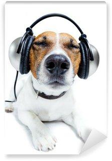 Vinylová Fototapeta Dog poslech hudby