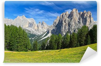 Vinylová Fototapeta Dolomity - Rosengarten montáž