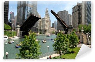 Vinylová Fototapeta Downtown Chicago, Illinois