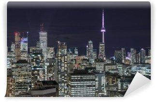 Vinylová Fototapeta Downtown Toronto v noci